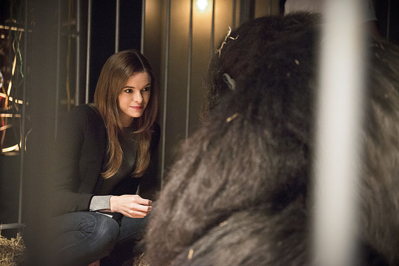 "The Flash -- ""Gorilla Warfare"" -- Image FLA207B_0006b.jpg -- Pictured: Danielle Panabaker as Caitlin Snow -- Photo: Cate Cameron/The CW -- © 2015 The CW Network, LLC. All rights reserved."
