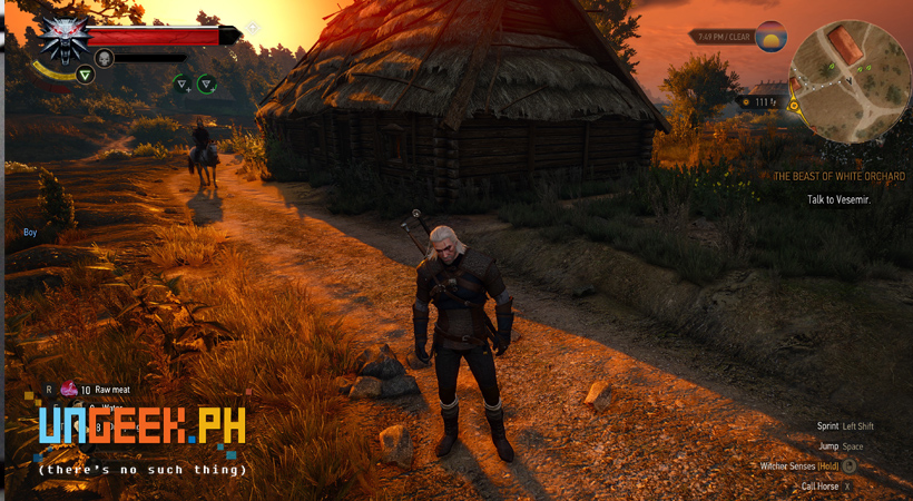 Geralt in all his 4k glory