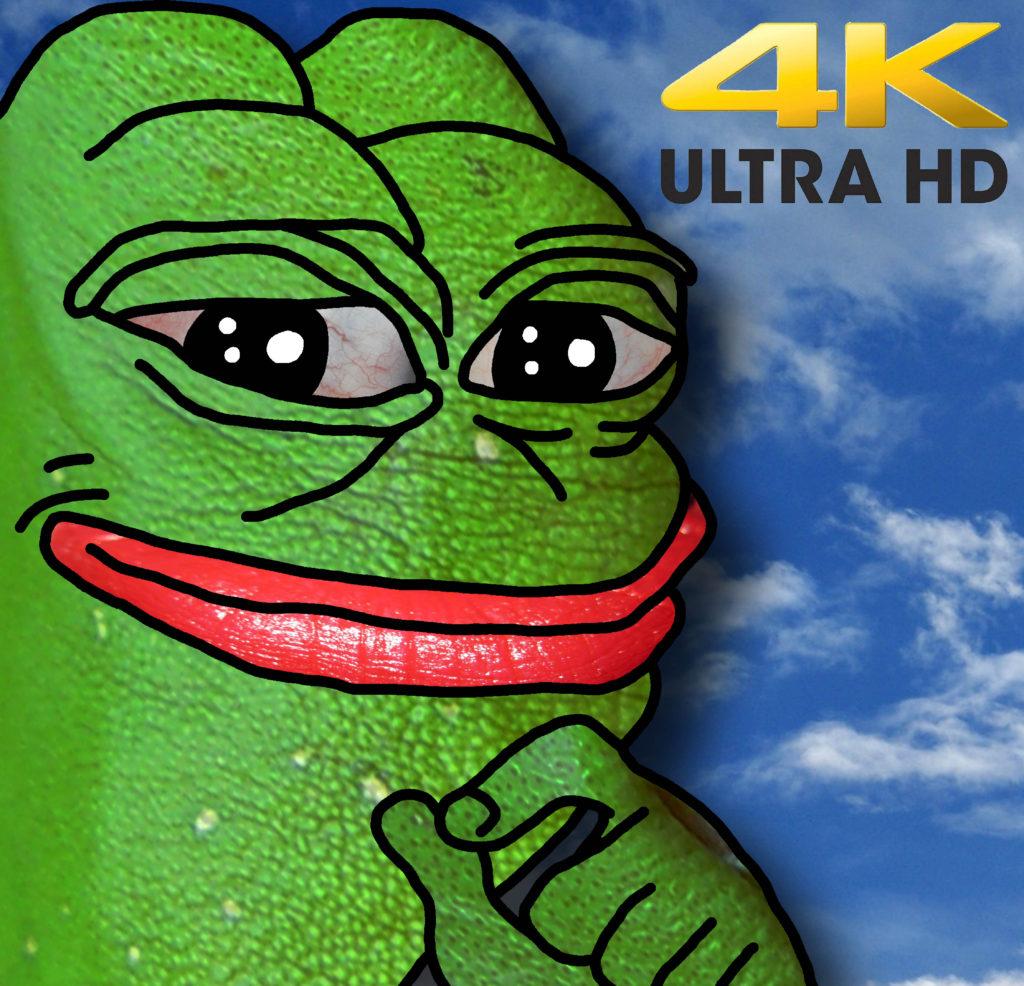Smug Frog in 4k
