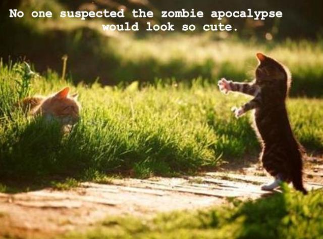zombie_kitteh
